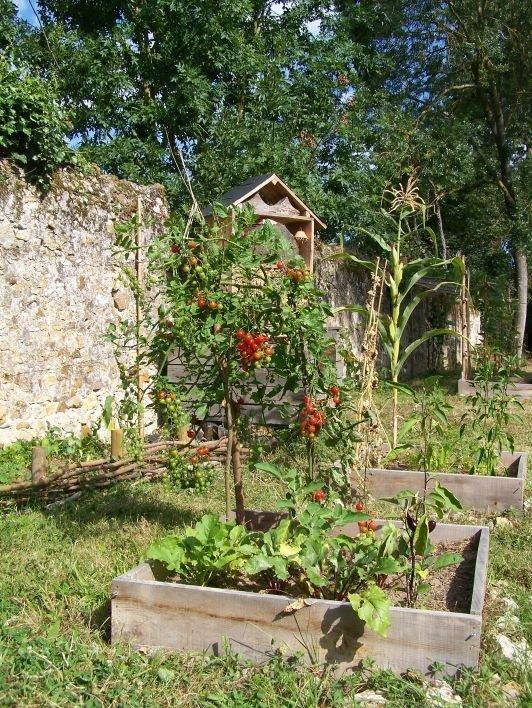 Un aperçu du jardin