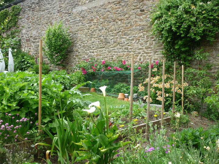 Une partie du jardinet