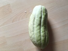 Courge a identifier