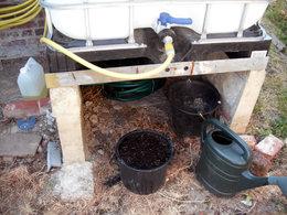 Cultivez-vous des aromatiques dans des pots ?