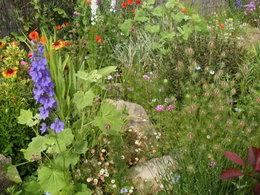 Combien de temps passez-vous dans votre jardin par semaine ?
