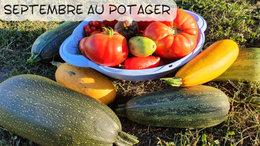 Septembre au petit potager : que semer, que planter, que ...