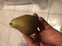 variété de poires
