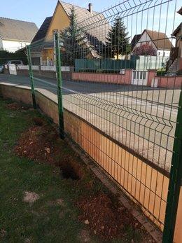 clôture grillage + lierre grimpant
