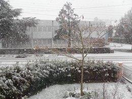 neige ...........