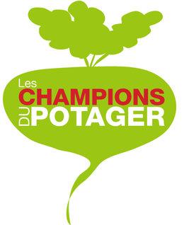 Nouvelle Saison Des Champions Du Potager !
