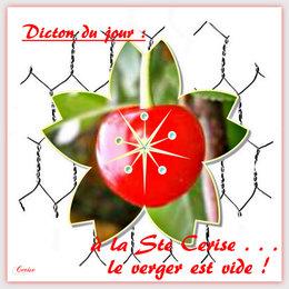 Fêtes des Saint(e)s du jardin . . . et leurs dictons !