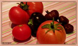 Dernière récolte de Tomates ? . . . peut-être !
