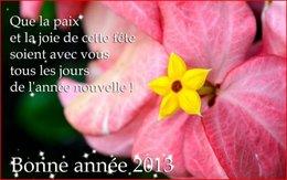 Voeux 2013 . . .