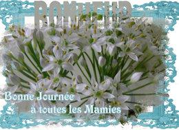 Bonne Fête à toutes les Supers Mamies !!