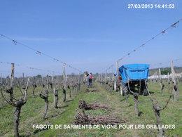 Sarments de vigne .........