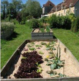voici toutes mes semis 25 variétés de legumes