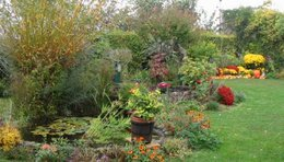 Construire un bassin au jardin