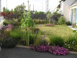 Quelle plante pour balcon en plein soleil de Provence