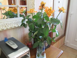 Les roses offertes