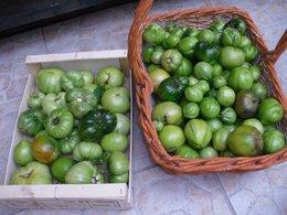 Travaux au jardin avant l'hiver le 18 19 et 20 octobre...