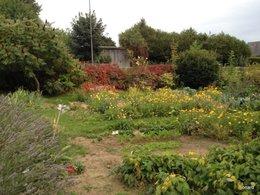Le jardin de Damelen