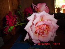 toujours le bouquet
