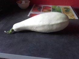 quel est ce legume