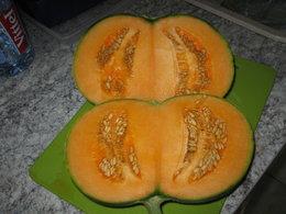 melon double  bis