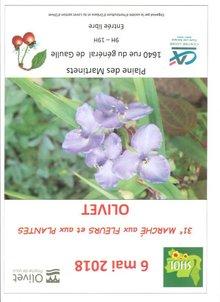 Marché aux fleurs et aux plantes