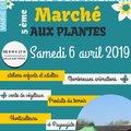 Marché aux plantes (BAILLEUL-SUR-THERAIN, 60)