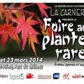 Foire aux Plantes Rares de Saint-Priest - 2019 (ST-PRIEST (MéTROPOLE DE LYON), 69)