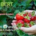Ambert côté jardin 11è édition (AMBERT, 63)