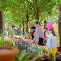 Fête des fleurs et des produits du terroir (RIORGES, 42)