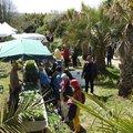 Fête des Plantes du Jardin exotique de Saint-Renan (SAINT-RENAN, 29)