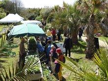 Fête des Plantes du Jardin exotique de Saint-Renan