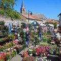 27e Marché aux Fleurs et à la décoration de jardin (RODEMACK, 57)