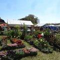 Salon des Plantes Souvigny 2019 (SOUCIGNY, 03)