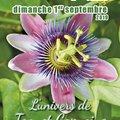Fête des Plantes (LE PLESSIS-GRAMMOIRE, 49)