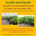 Vente exceptionnelle de plants de tomates anciennes, de légumes et fleurs (PONT-MELVEZ, 22)