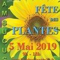 Fête des plantes (SAUCATS, 33)