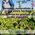 Atelier : Le mystère des plantes du jardin mandala en famille (SEPMES, 37)