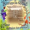 10ièmes Journées des plantes (BONREPOS-RIQUET, 31)