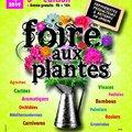 Foire aux plantes (VILLENEUVE SUR VèRE, 81)