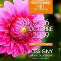 Journées des Plantes et Art du Jardin - Fête d'automne Jossigny (JOSSIGNY, 77)