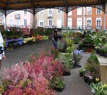 Fête des plantes de Foix