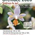 13ème Salon International Orchidée - Senteurs du Sud (BOUC BEL AIR, 13)