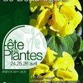 Fête des Plantes de Printemps de Saint-Jean de Beauregard (SAINT-JEAN DE BEAUREGARD, 91)
