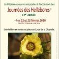 14e Journées des Hellébores à Xirocourt (XIROCOURT, 54)