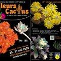 Salon des cactus, succulentes et plantes adaptées à la sécheresse (EGLISENEUVE PRèS BILLOM, 63)