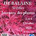 30ème Fête des Plantes Aglaë Adanson (VILLENEUVE-SUR-ALLIER, 03)