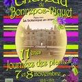 11èmes Journées des Plantes de Bonrepos-Riquet (BONREPOS-RIQUET, 31)