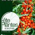 Fête des Plantes d'Automne de Saint-Jean de Beauregard (SAINT-JEAN DE BEAUREGARD, 91)