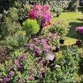 Fête des Jardins : le marché de printemps ! (LA TURBALLE, 44)