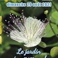 Fête des Plantes du Plessis Grammoire (49) (LE PLESSIS GRAMMOIRE, 49)